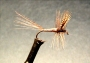 Classic Dry Flies